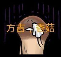 Fang-ChiYang
