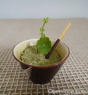 抹茶布丁盆栽